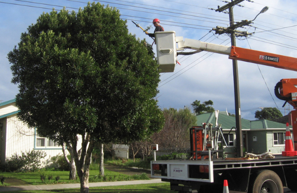 power line clearances
